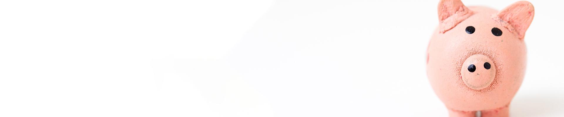 1920x400px_banner_bericht_7